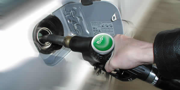 biodiesel14
